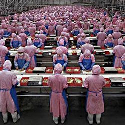ニンテンドーNXの生産はFoxconnが担当し、2016年下期に開始するという投資筋の予想