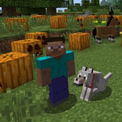 Minecraft : Wii U Editionパッケージ版、海外で予約