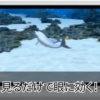 ニンテンドー3DSのプリインストール動画、「3D体験映像」のフルバージョンが「EYERESH」に収録、パクリではない