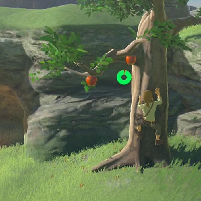 ゼルダの伝説 ブレス オブ ザ ワイルド、宮本茂、木登り好き